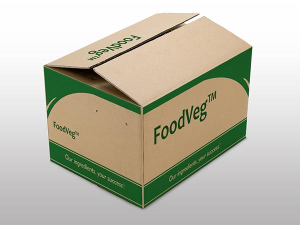 Dehydrated Onion Powder Manufacturer