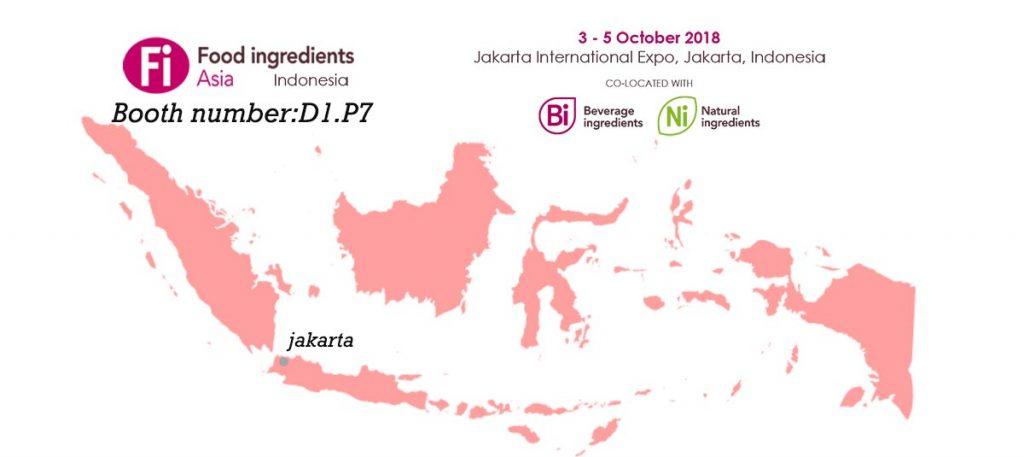 FIA Indonesia 2018