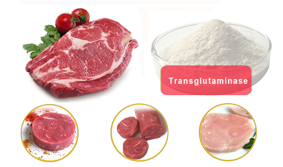 transglutaminase supplier