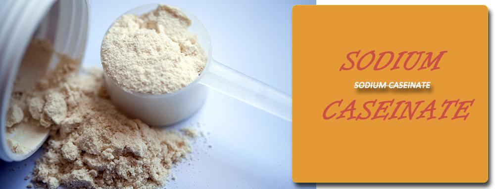 sodium caseinate supplier
